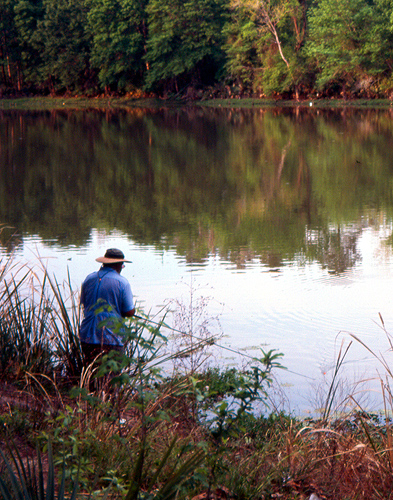 Fishing on the banks of Stubblefield Lake