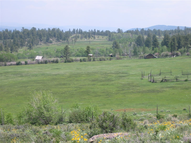 View east of southern field and corral. Milking barn, granary and other buildings in the background.