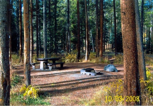picture of campsite at Gold Park