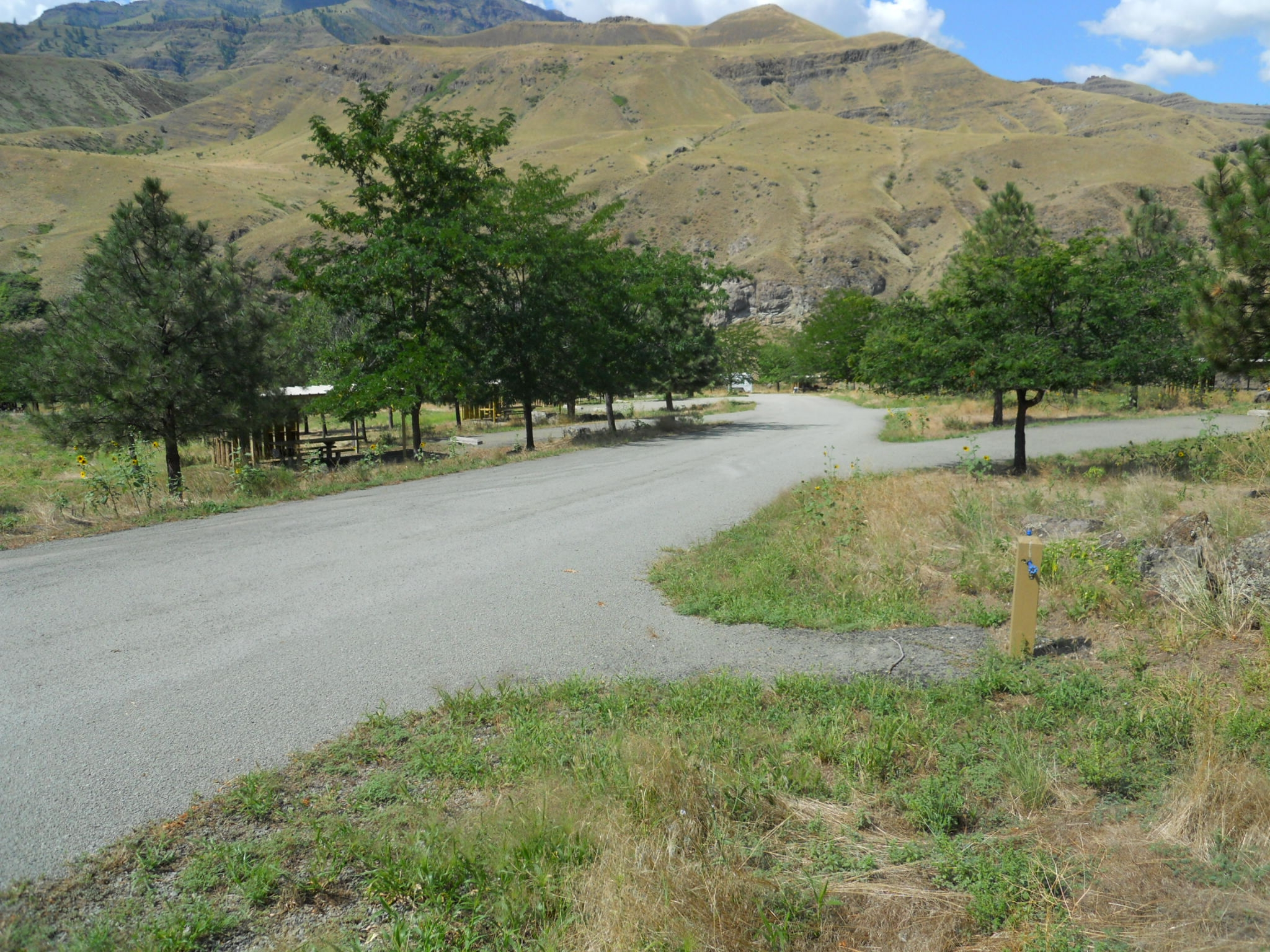 Paved camping sites at Pittsburg Campground