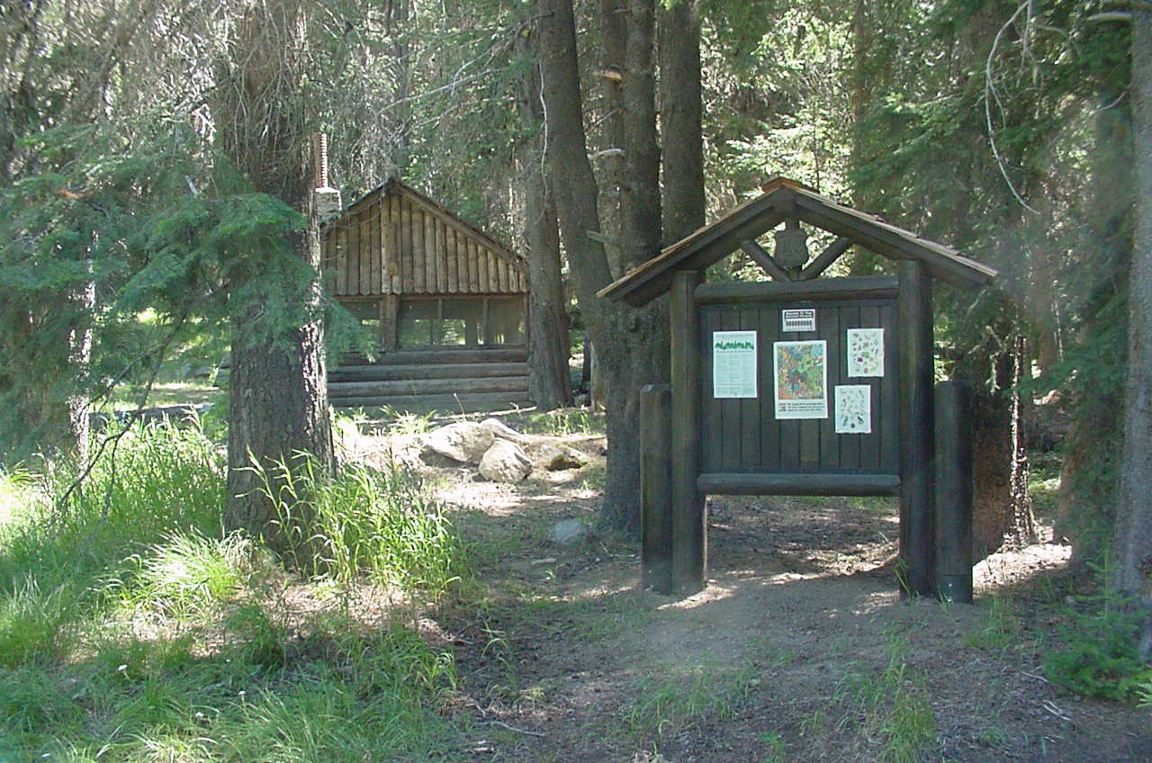 Old wooden picnic shelter in pine forest