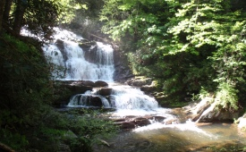 View of Conasauga Falls from Trail in Cherokee National Forest