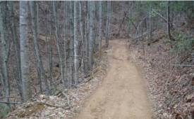 View of Buffalo Mountain ATV Trail in Cherokee National Forest