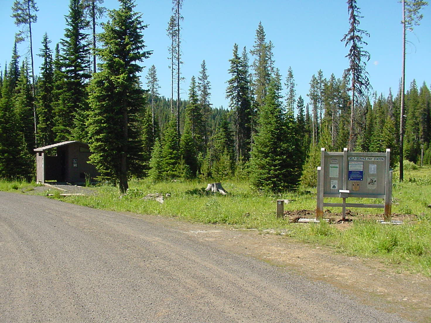 Forest campground with toilet building in foreground