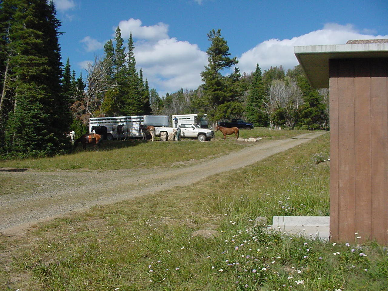 Mountain horse camp with truck and trailer