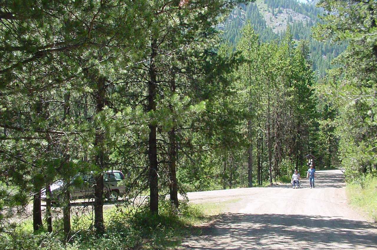 Man walking and another man in a wheel chair on a campground road witht pine trees