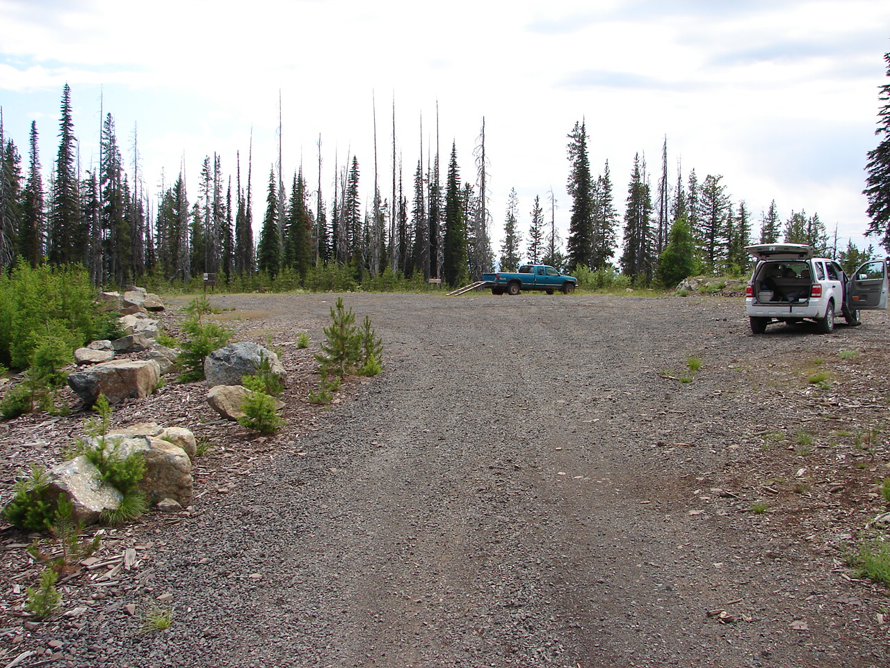 Large gravel parking area for a hiker trail with small pine trees