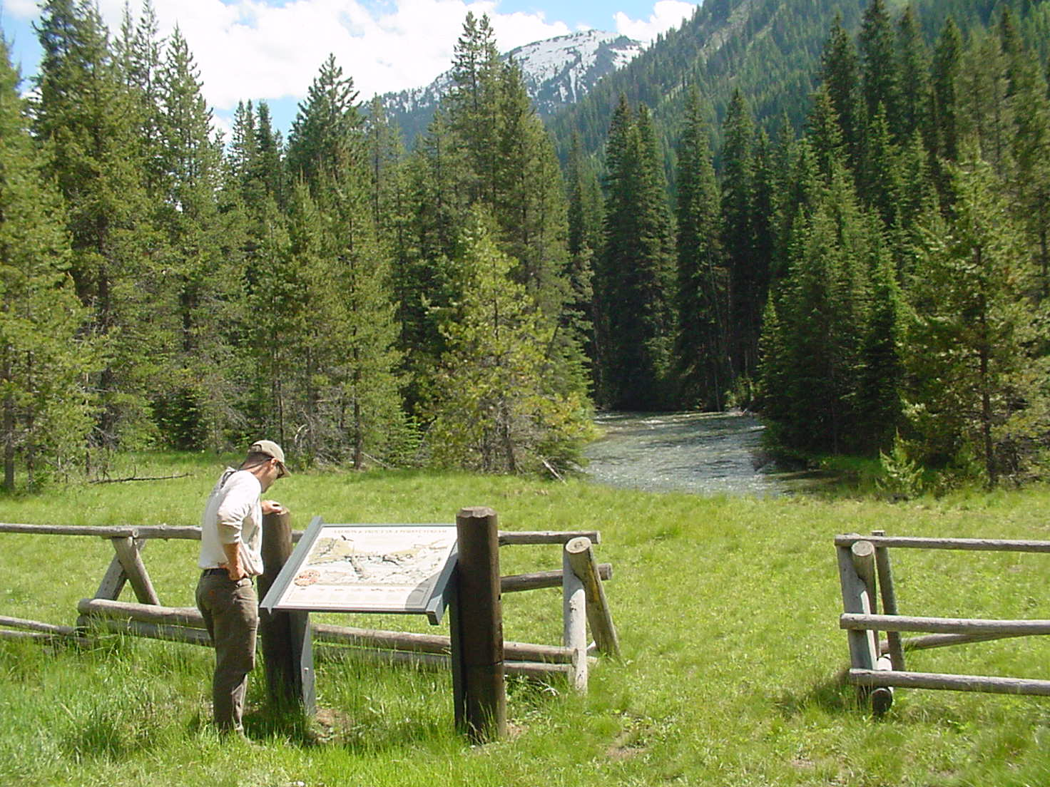 Man reading interpretive sign by a forested mountain stream
