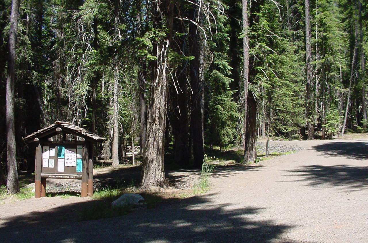 Hiker trailhead in fir trees with informatio board in foreground