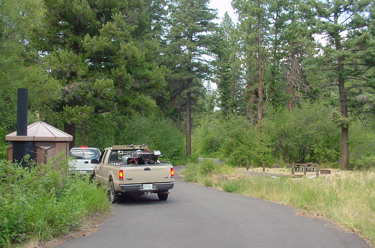 2 trucks parked along campground road by cottonwood trees