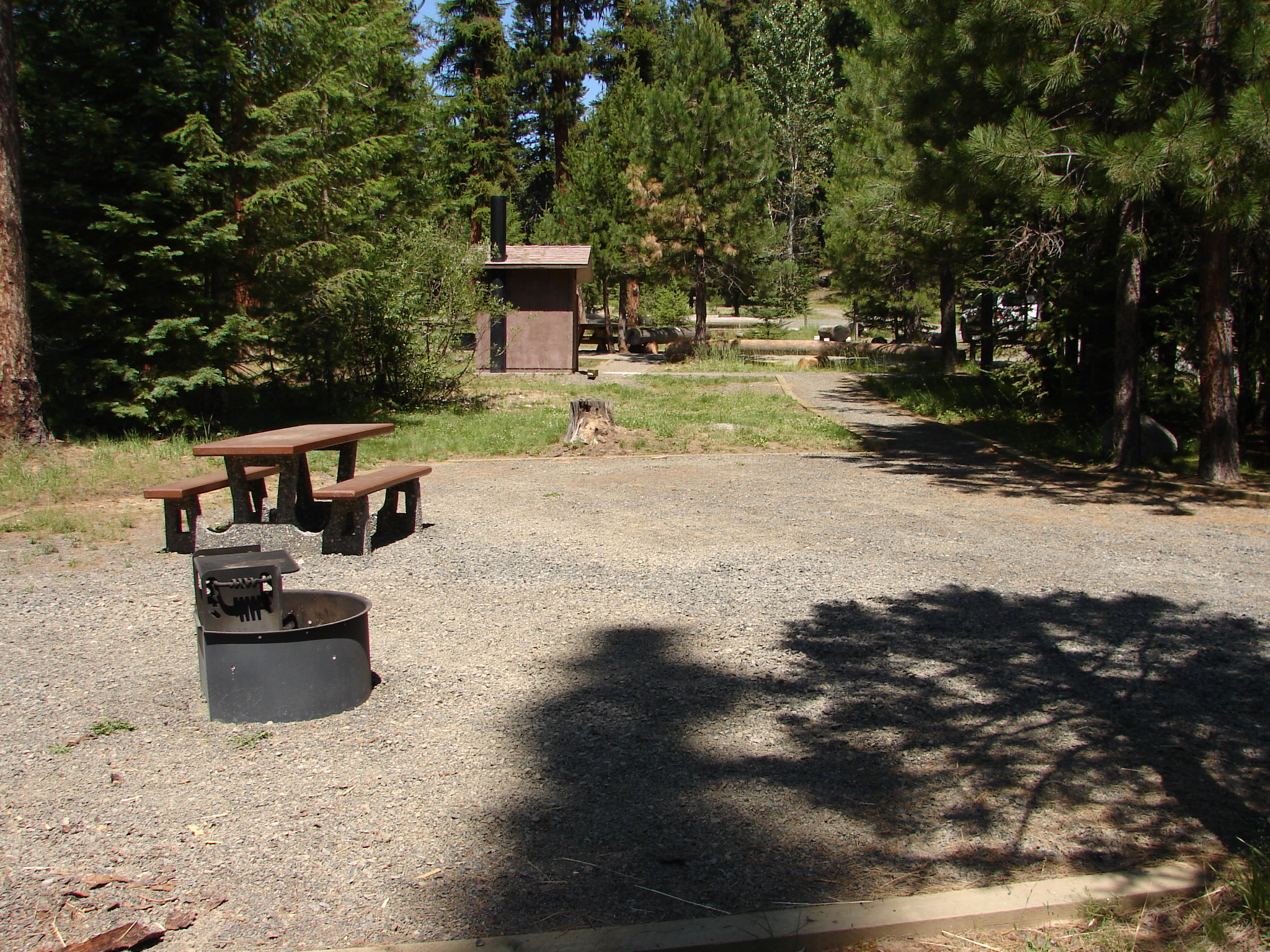 Forest campground with toilet building and pine trees near picnic table