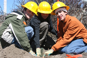 Volunteers from the Childrens Forest plant trees to help with forest restoration