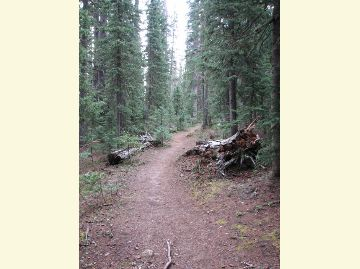 East Baldy Trail
