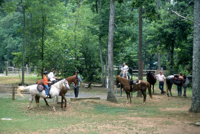 Horses and riders at Canebrake horse camp