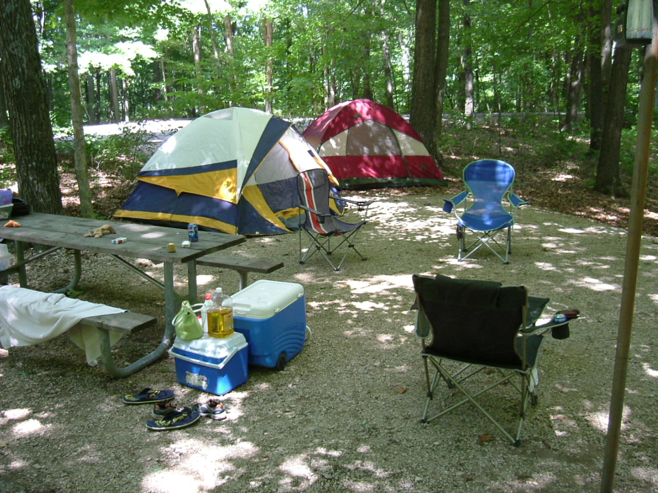 Camping at Celina Campground