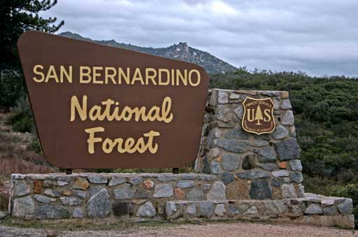 Forest entry sign greets visitors on State Highway 243
