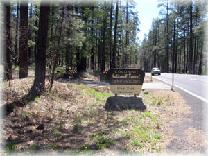 Entrance drive into Pine Flat Campground