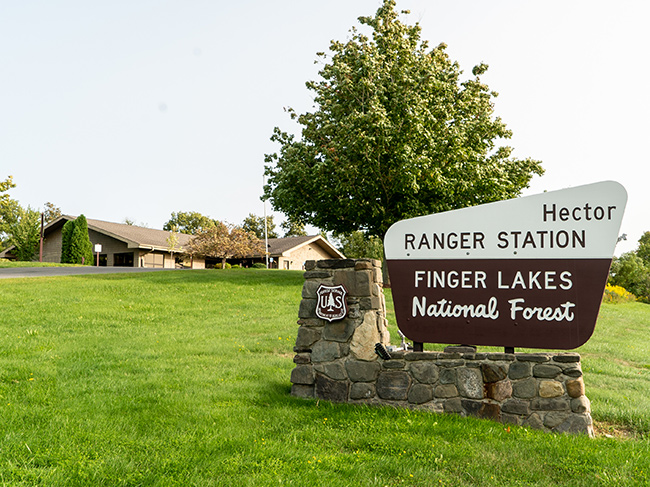 Hector Ranger District