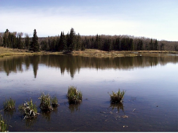 Carson National Forest - Canjilon Lakes