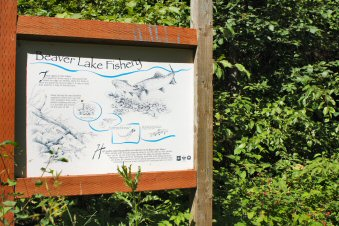 Beaver Lake Campground Fisheries Sign2