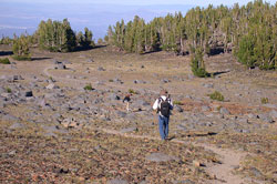 Hiker on Tam McArthur Rim. Click for wilderness information.