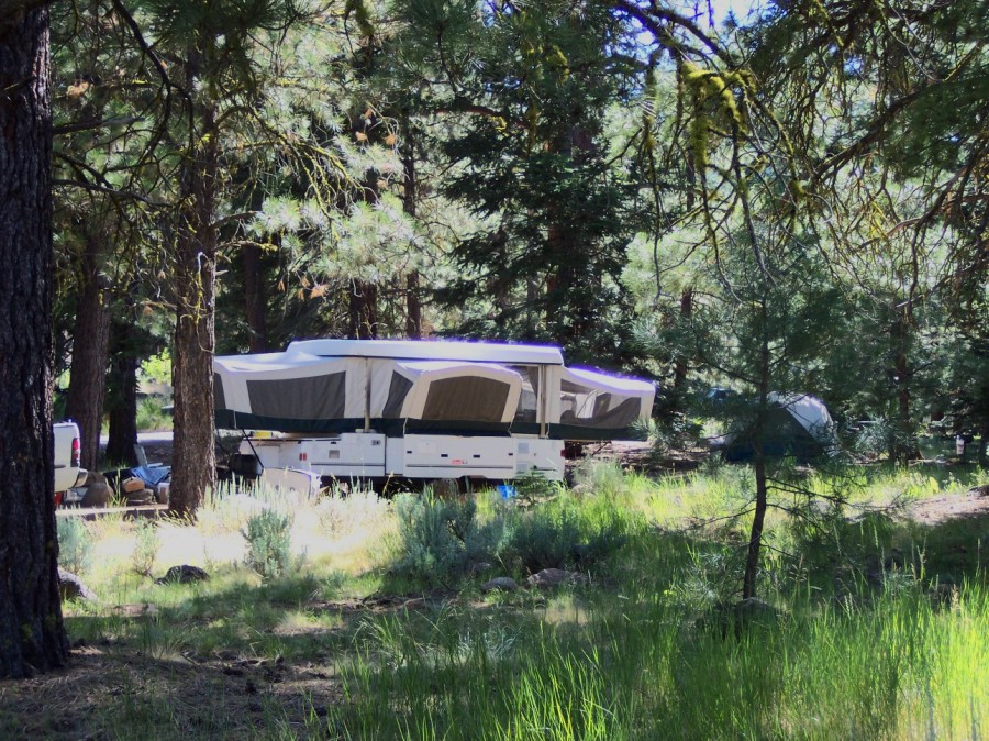An RV enjoys th shade trees at Blue Lake Campground