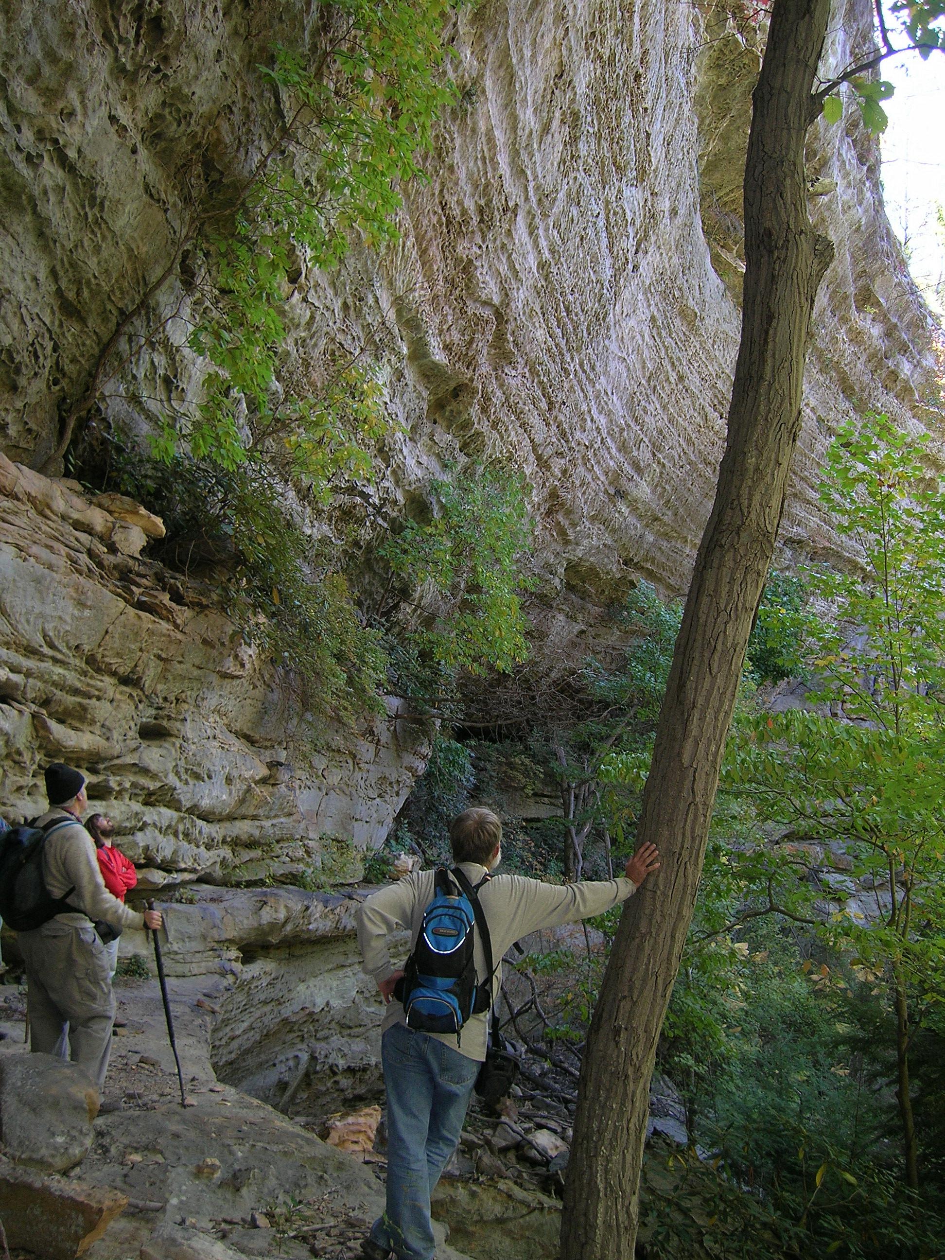 Beaver Creek Wilderness