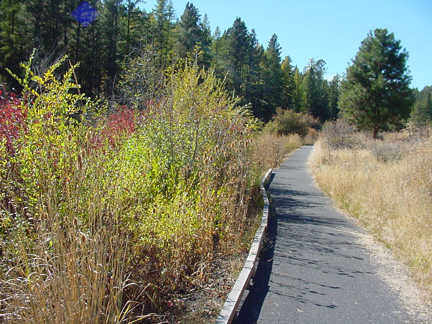 Accessible paved trail near the Powder River along a stream