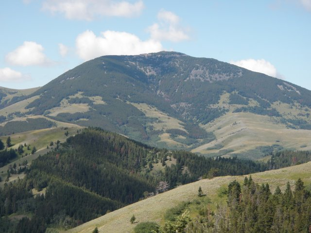 Helena Lewis And Clark National Forest