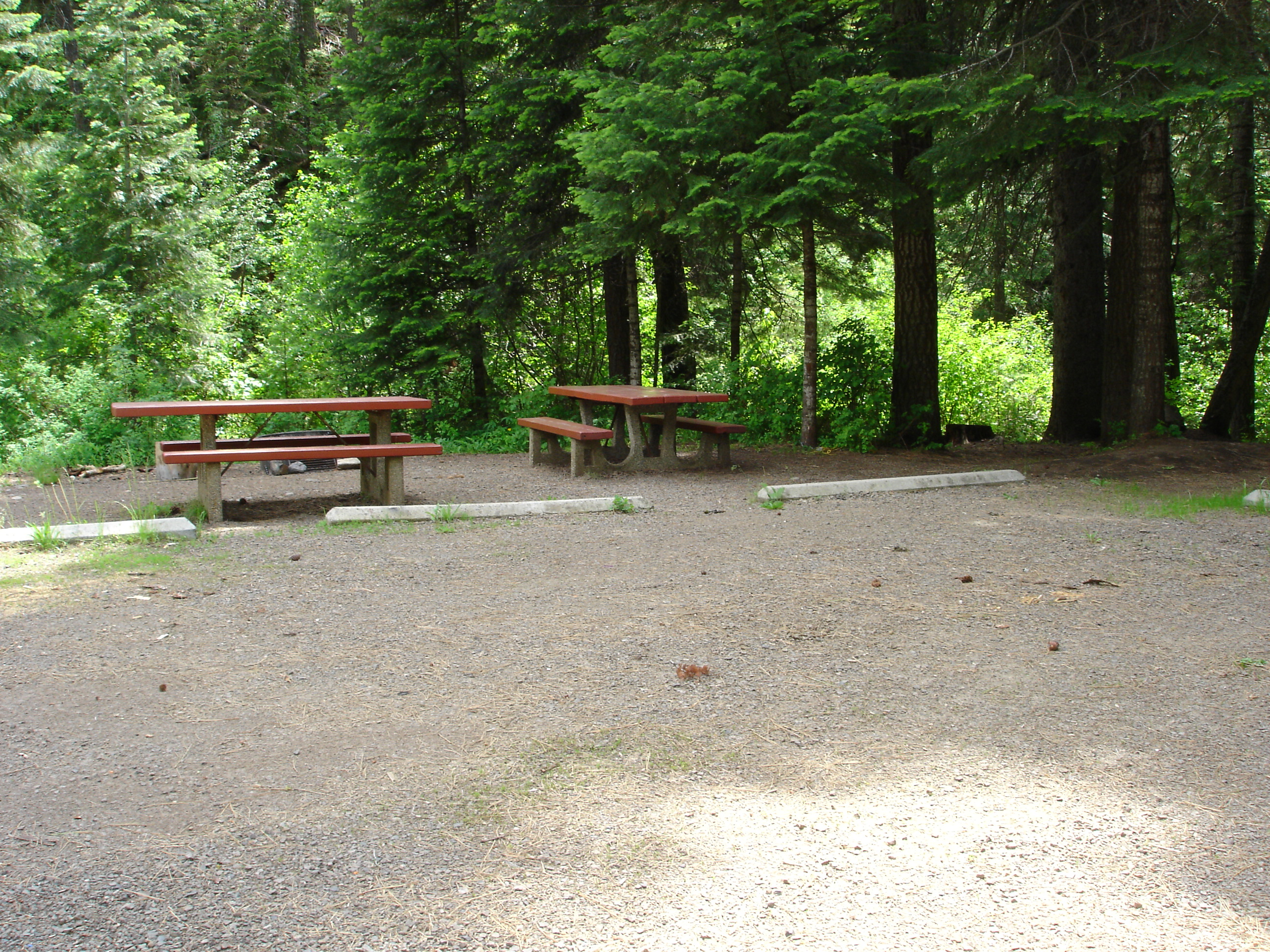 picture of campsite at Big Flat CG