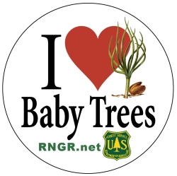 I Love Baby Trees logo