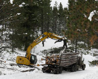 Loading timber on the truck in the snow