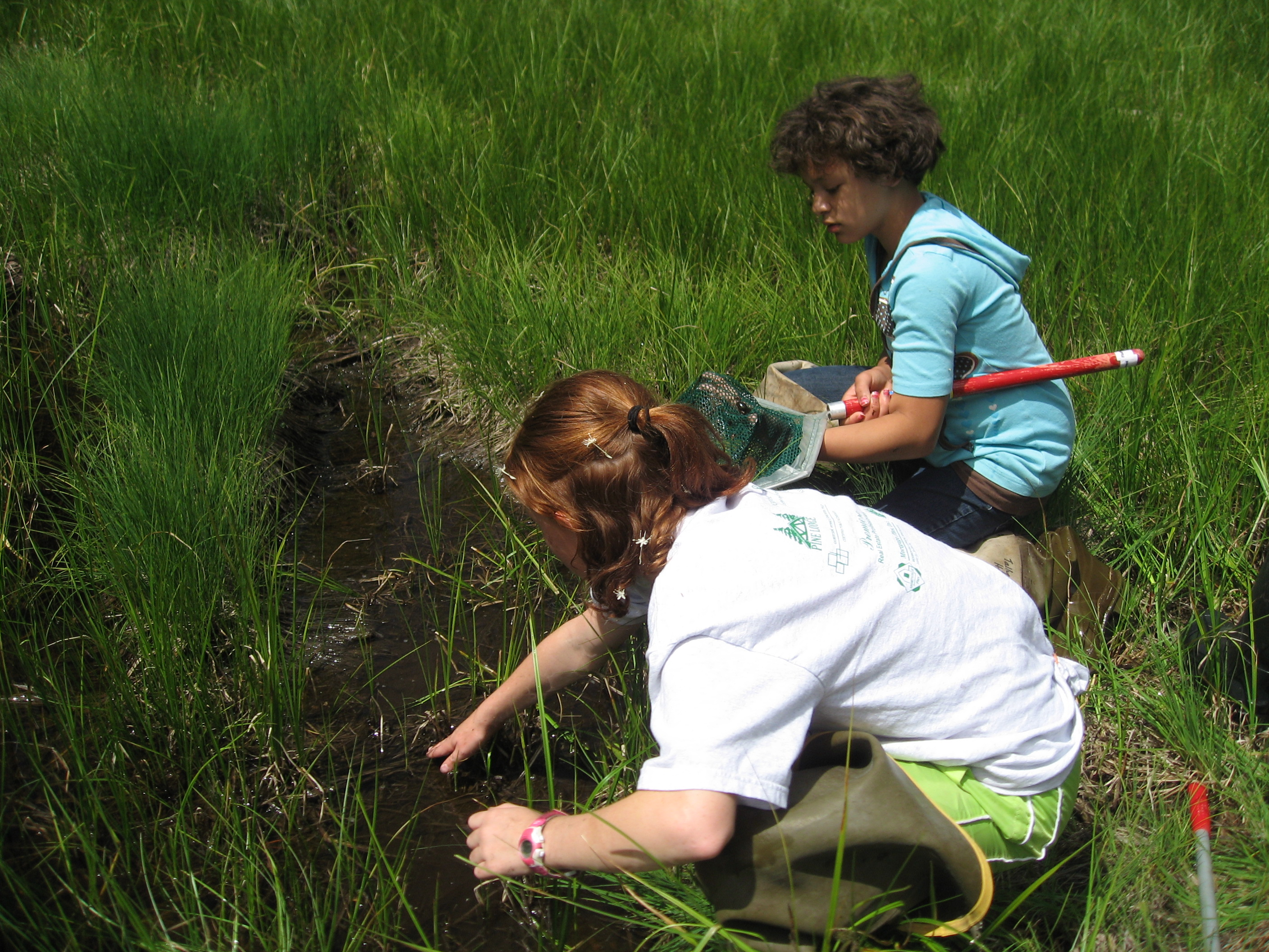 Young girls look for amphibians