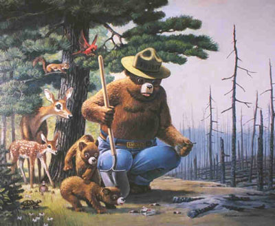 Smokey Bear - Always watch your campfire