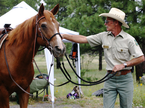 Photograph of a Forest Service employee walking a horse.