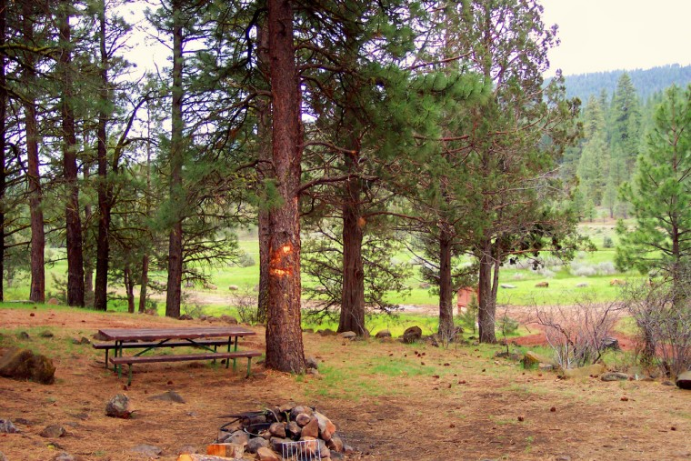 A campsite overlooking the meadow and Ash Creek.