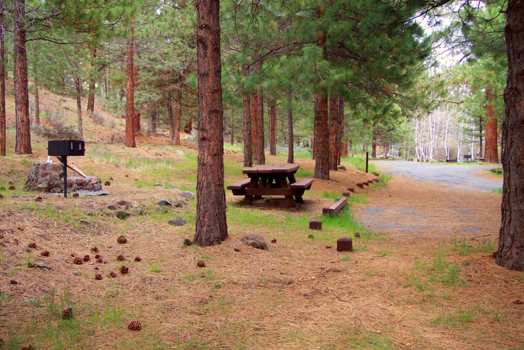 A table, fireplace and parking under the trees at Willow Creek Campground.