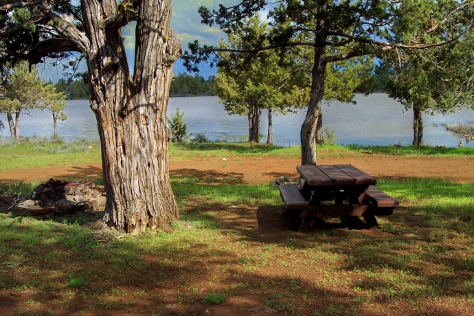 A table under the trees on the shore of Reservoir C.