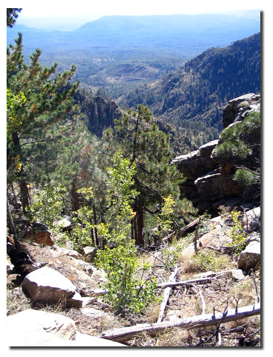 View from the Mogollon Rim looking south