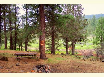 A campsite with table and fireplace sits slightly up a hill overlooking the green meadow and creek.