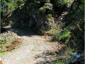 Steep, narrow upper portion of road to lookout.
