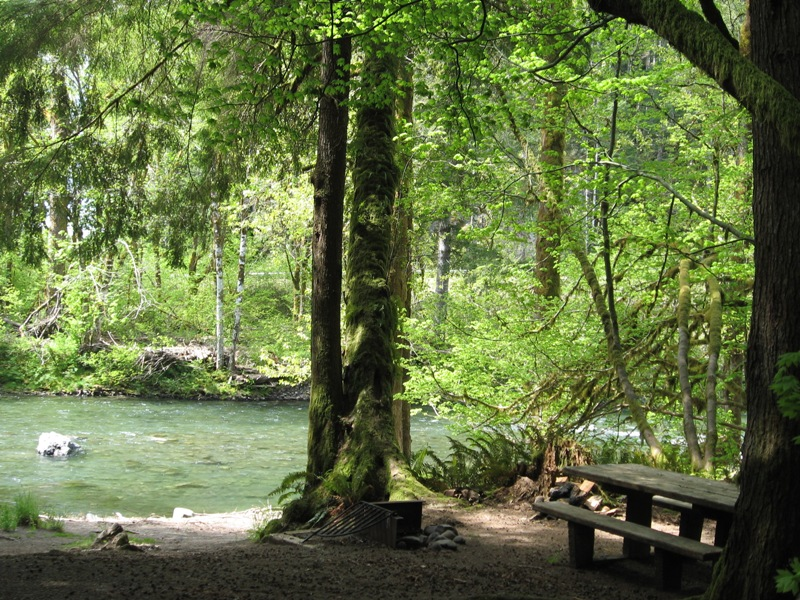 Camp along the Sol Duc River