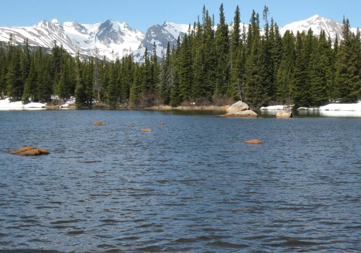 Photo showing Red Rock Lake in June with open water and snow-capped peaks in the background
