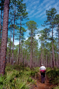 Day hiker on the Florida Trail