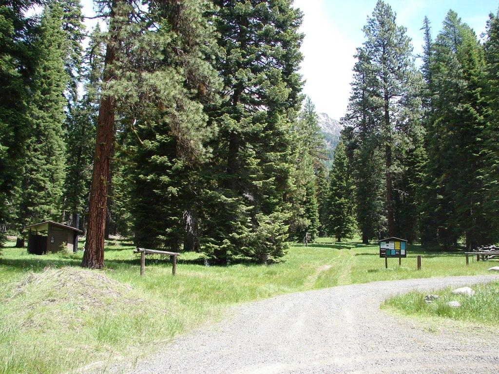 Mountain trailhead with pine trees and mountains in background
