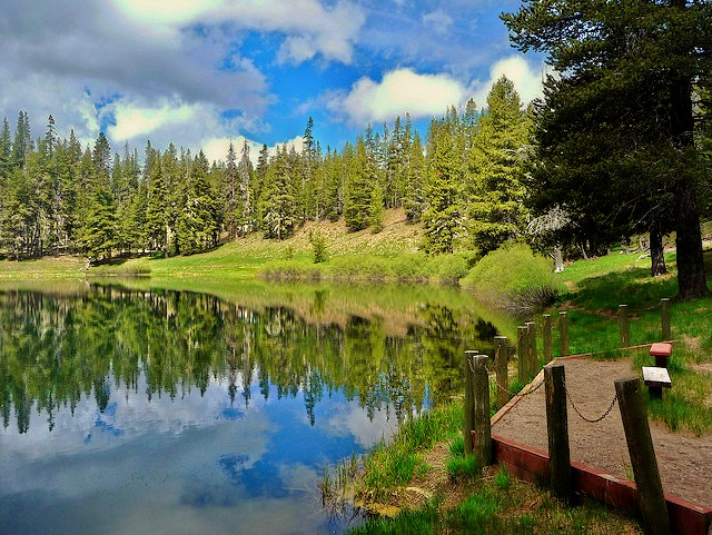 Calm water reflects the blue sky and tall trees surrounding Little Medicine Lake.