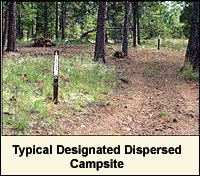 Typical Designated Dispersed Campsite