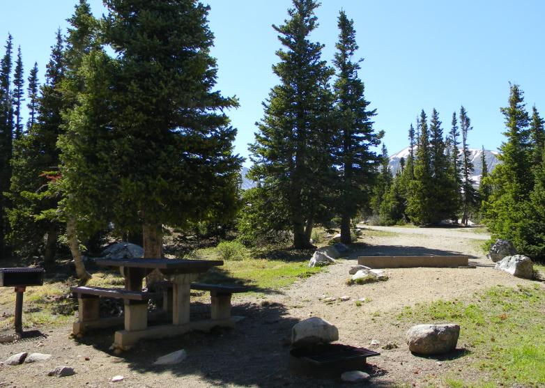 Photo showing a typical campsite at Pawnee Campground with a picnic table and pine trees