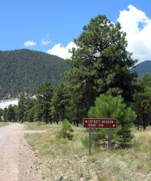 About another mile up, you will see another sign at the junction of Lockett Meadow and FR 418.