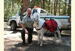 A Modoc Law Enforcement Officer poses with a goat who helped pack out marijuana from the wilderness.